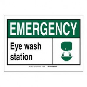 Brady® 119991 Fire Safety Sign, 5 in H x 7 in W, Black/Green on White, Self-Adhesive Mount, B-946 Vinyl