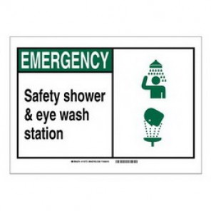 Brady® 119998 Fire Safety Sign, 5 in H x 7 in W, Black/Green on White, Surface Mount, B-401 Plastic