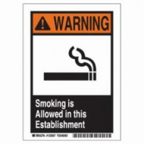 Brady® 123056 Smoking Allowed Sign, 7 in H x 5 in W, Black/Red/Orange on White, Surface Mount, B-946 Vinyl
