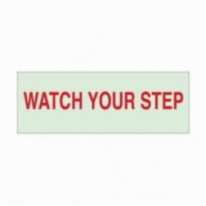 Brady® 80266 BradyGlo™ Rectangle Exit & Directional Sign, 2-1/2 in H x 7 in W, Red on Green, Self-Adhesive Mount, B-324 Glow-In-The-Dark Polyester