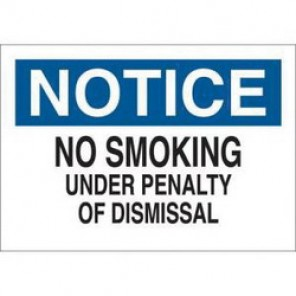 Brady® 88387 No Smoking Sign, 10 in H x 14 in W, Black/Blue on White, Surface Mount, B-302 Polyester